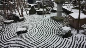 d初冬の庭